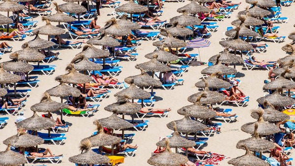 Tourists Flock To The Mallorcan Town Of Magaluf...MALLORCA, SPAIN - JULY 13: Tourist sunbathe at Magaluf beach on July 13, 2014 in Mallorca, Spain. Magaluf is one of the Britain's favorite holiday destinations popular with sun, beach and clubbers alike. (Photo by David Ramos/Getty Images)