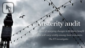 Austerity audit