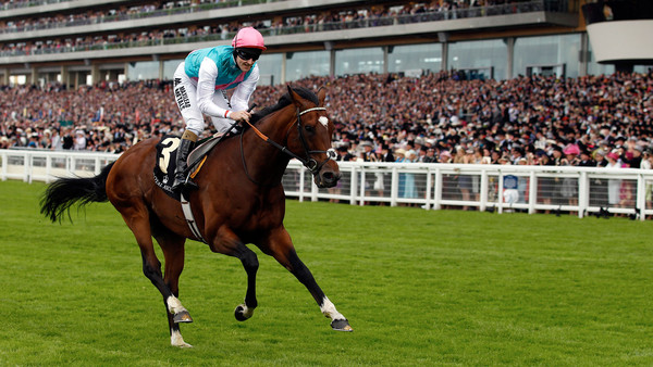 Tom Queally on Frankel wins The Queen Anne Stakes during the first day of racing at Royal Ascot